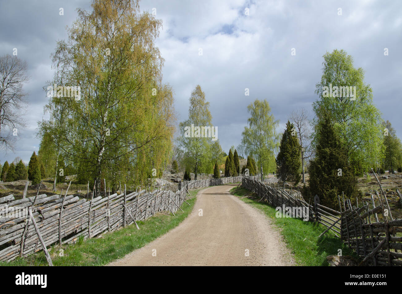 Winding gravel road through an old fashioned landscape with wooden fences - Stock Image