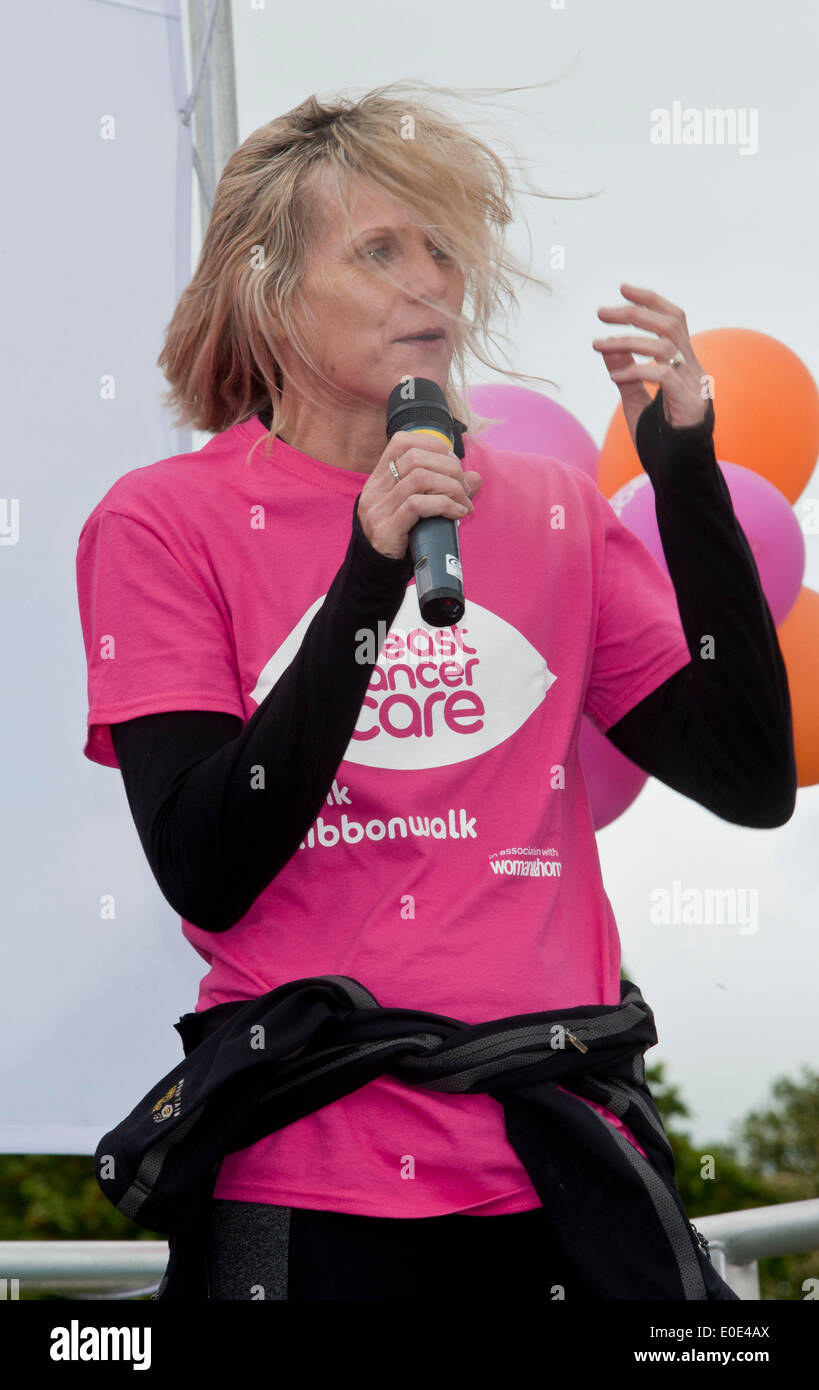 Linda Barker,  took part in the Pink Ribbon walk - 10 mile walk around grounds of World Heritage site Blenheim Palace - Stock Image