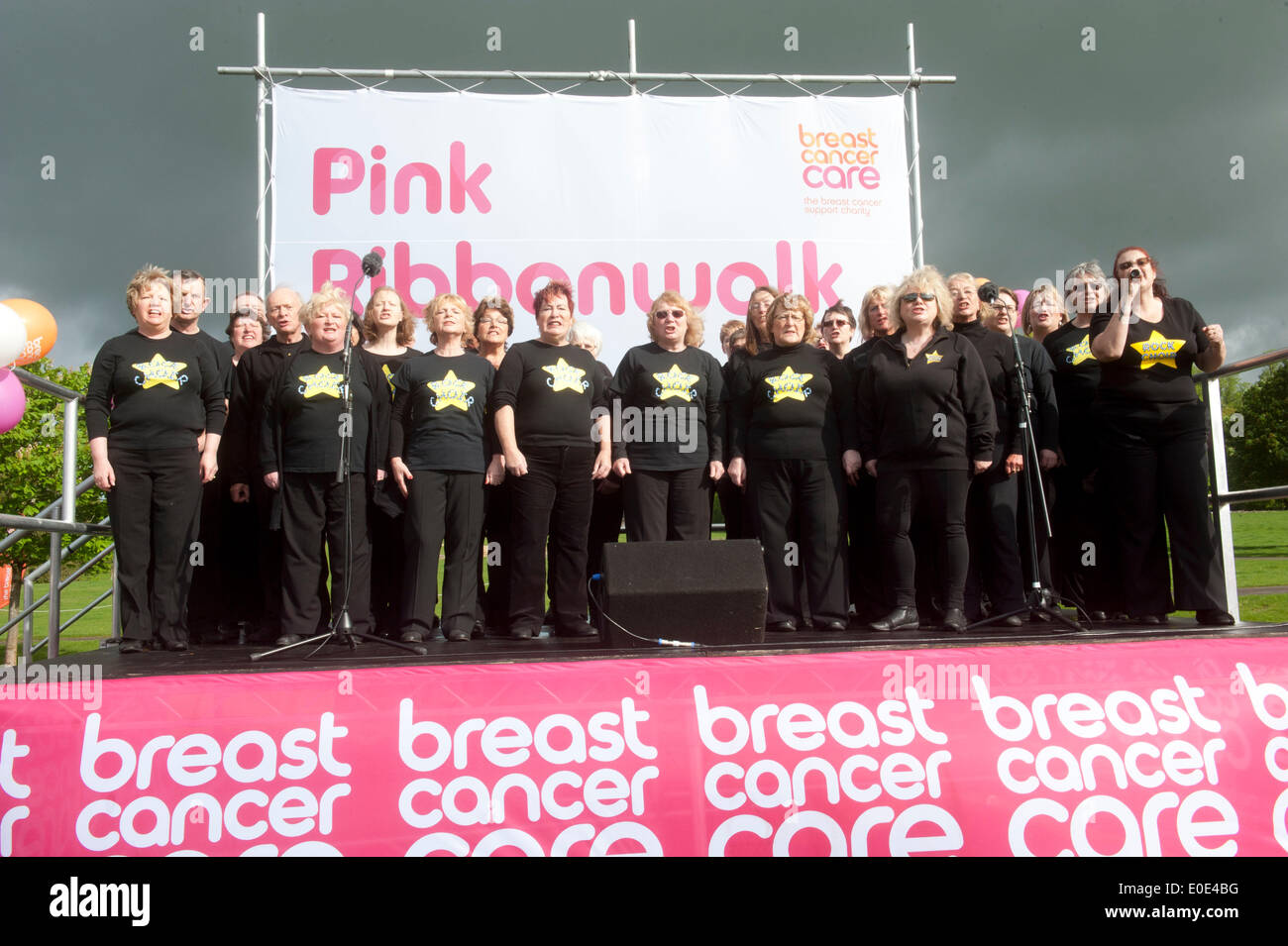 the 10th Pink Ribbon walk at Blenheim Palace, - Stock Image