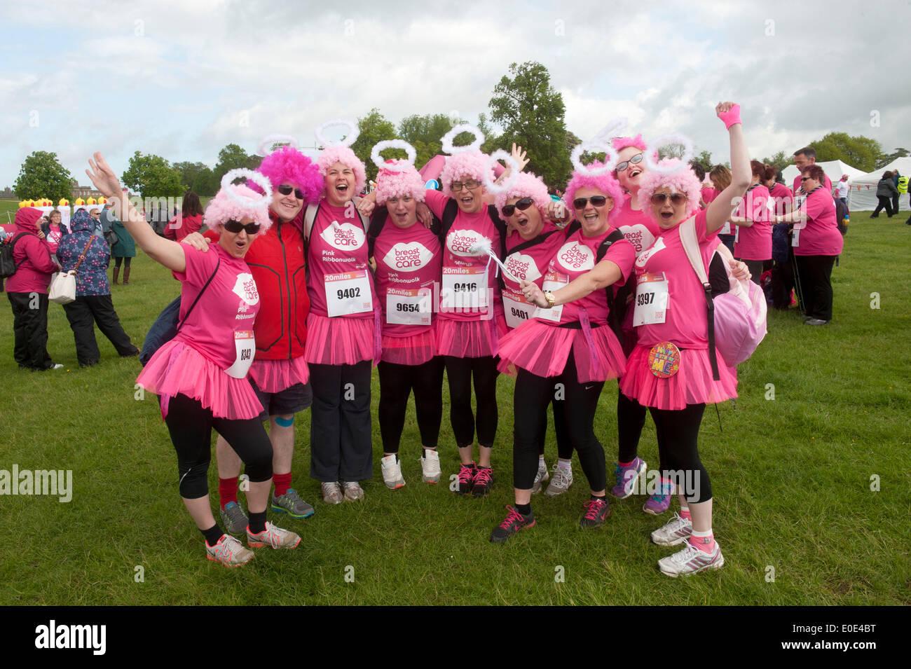the 10th Pink Ribbon walk at Blenheim Palace, - Stock Image