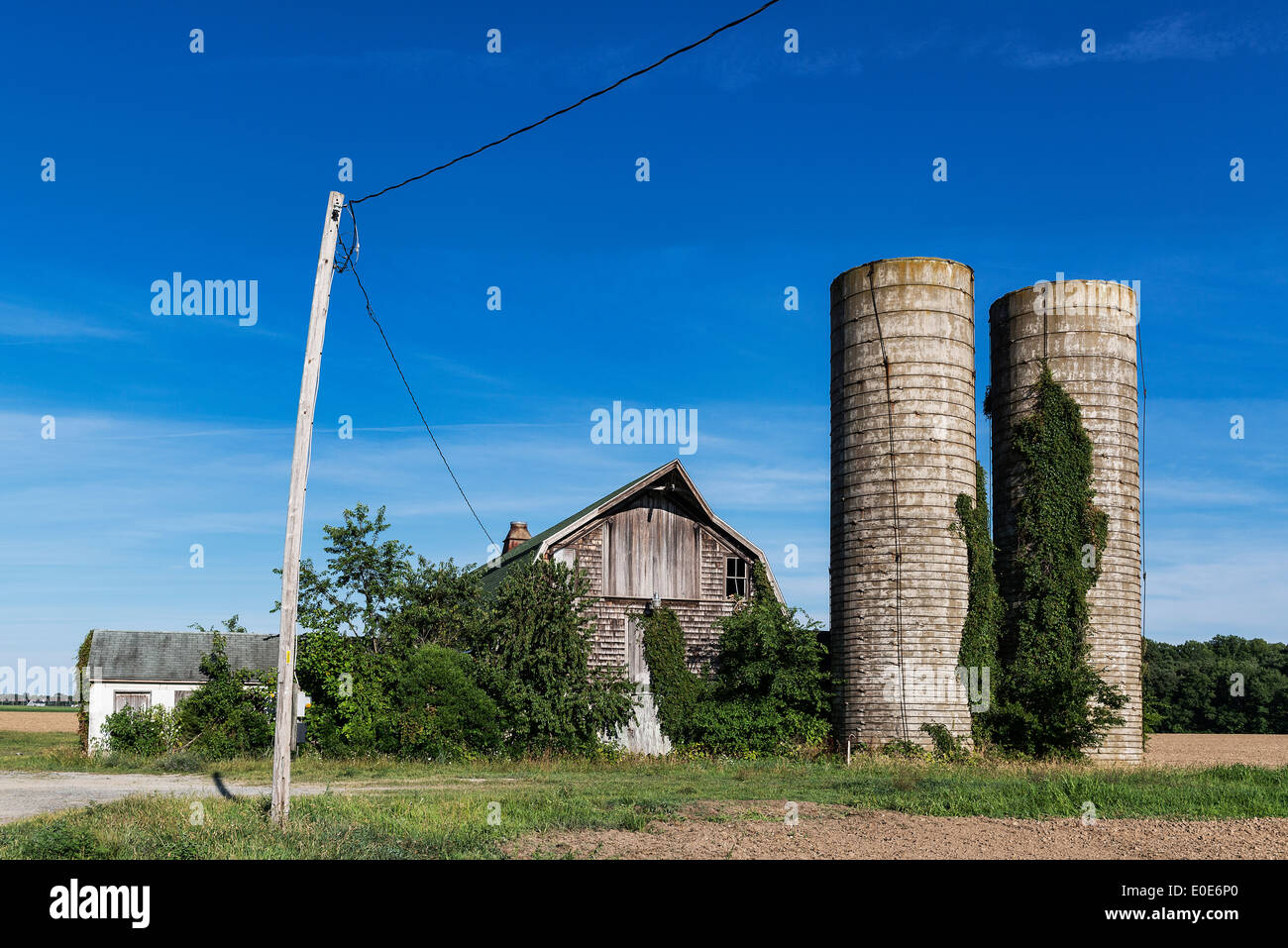 Neglected barn and silos, Delaware, USA - Stock Image