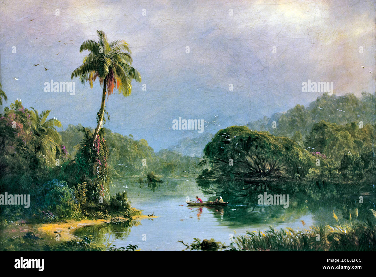tropical paintings stock photos tropical paintings stock images
