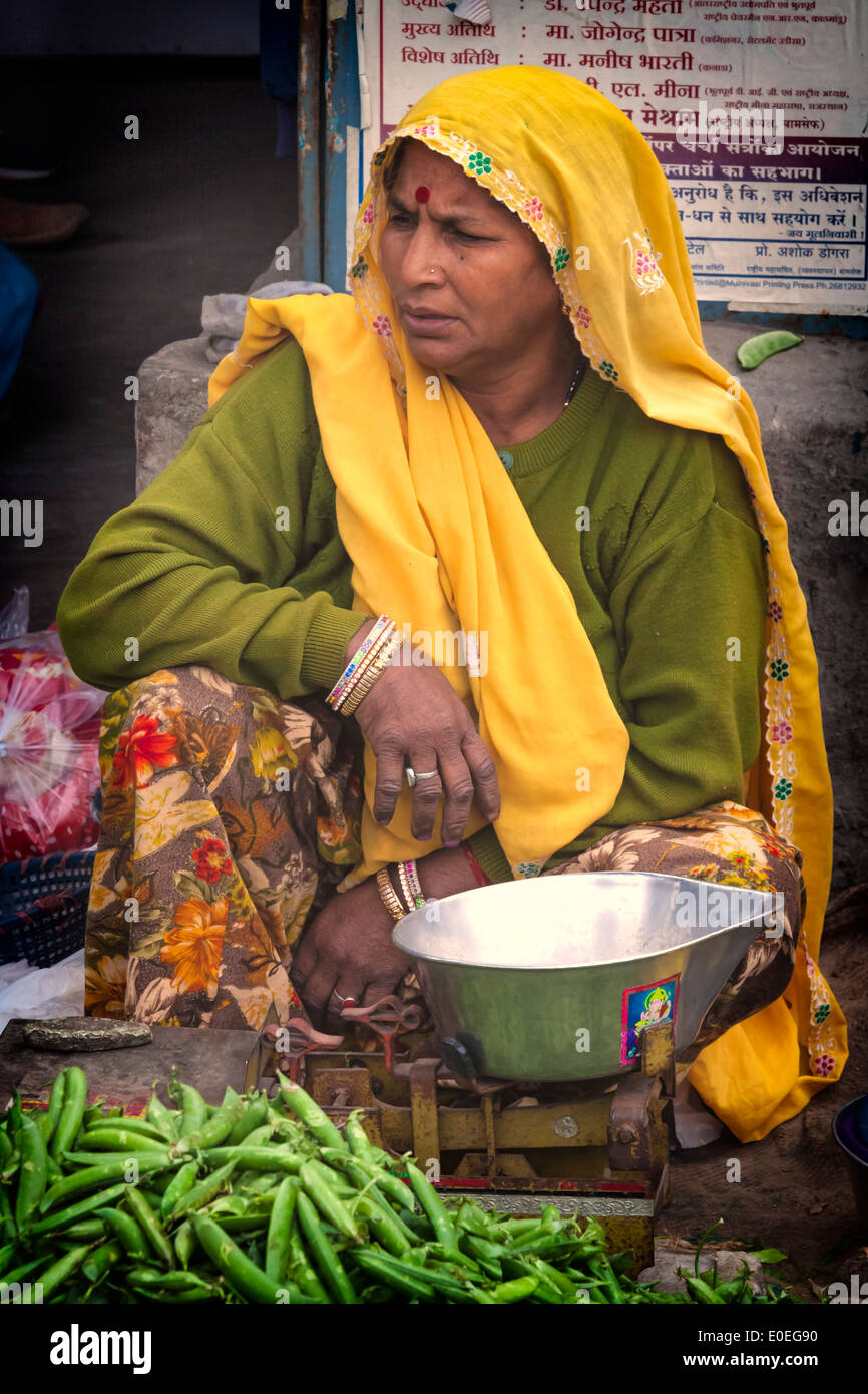 India, Rajasthan, Jaipur, saleswoman on the grocery market - Stock Image