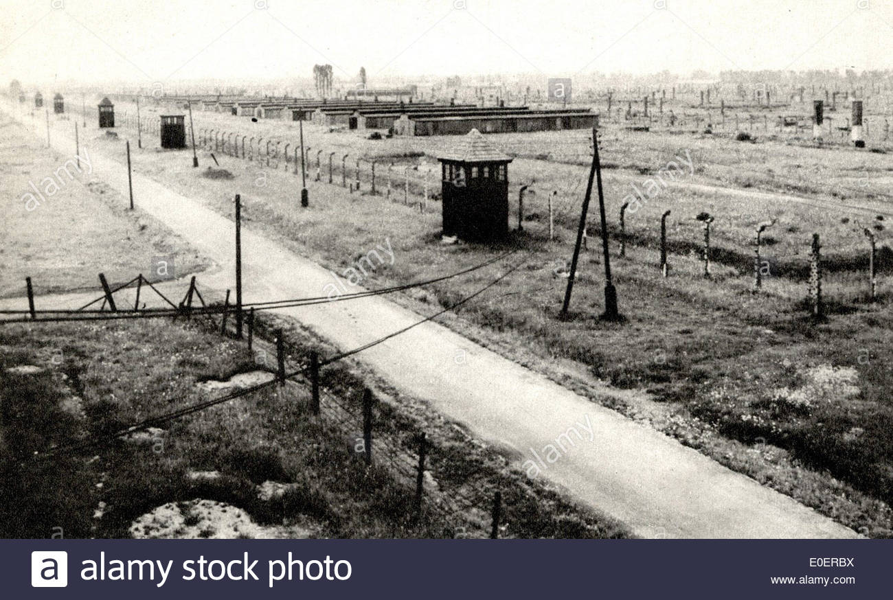 Auschwitz - Stock Image