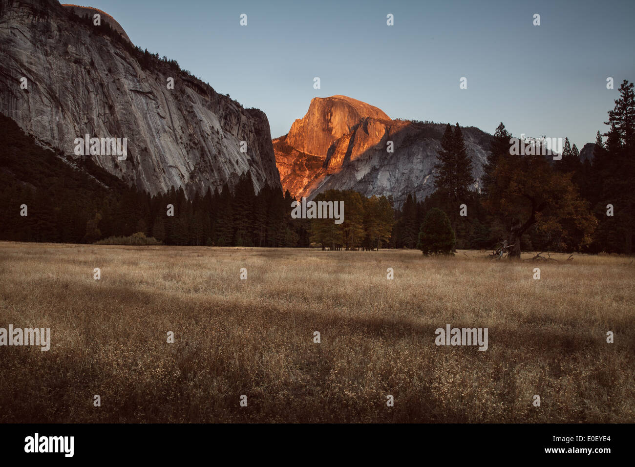 Half Dome at Sunset from field in Yosemite National Park Stock Photo