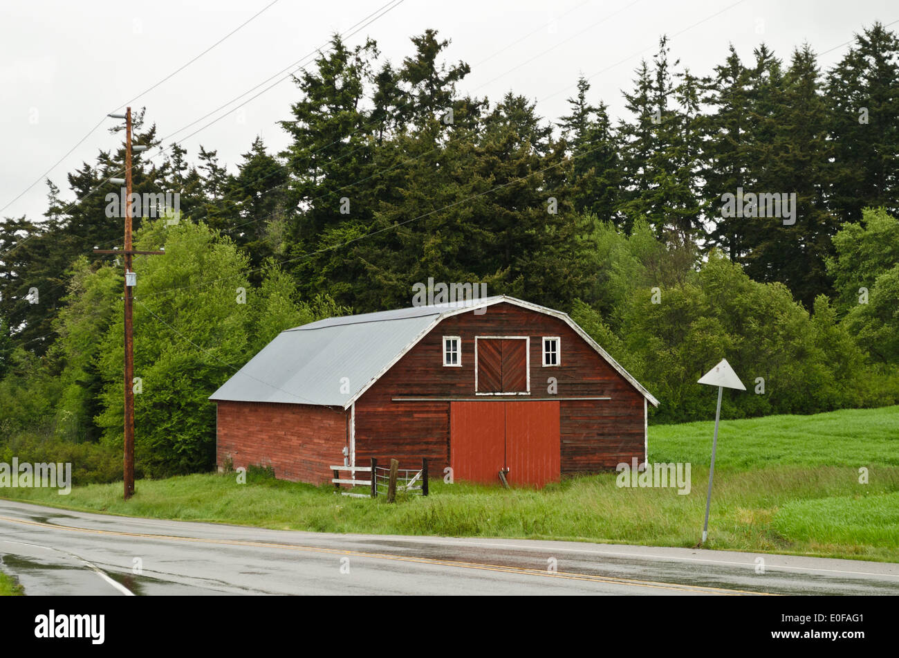 Old red barn building on Whidbey Island, Washington State.  Rural countryside.  American country road. - Stock Image