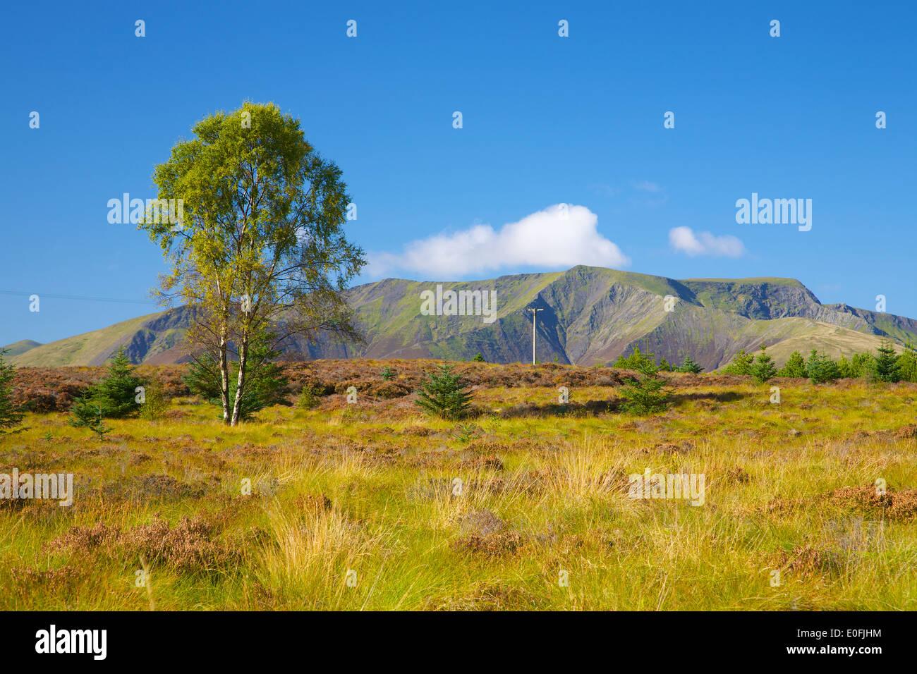 Blencathra (Saddleback), Lake District National Park, Cumbria, England, United Kingdom. - Stock Image
