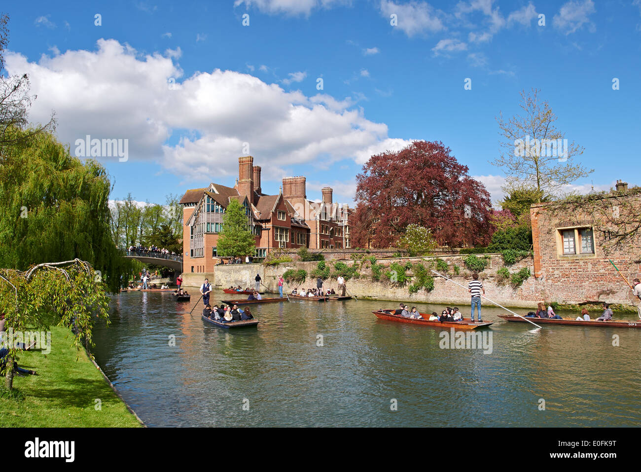Punting on the River Cam, by Jerwood Library at Trinity Hall, Cambridge, UK, - Stock Image