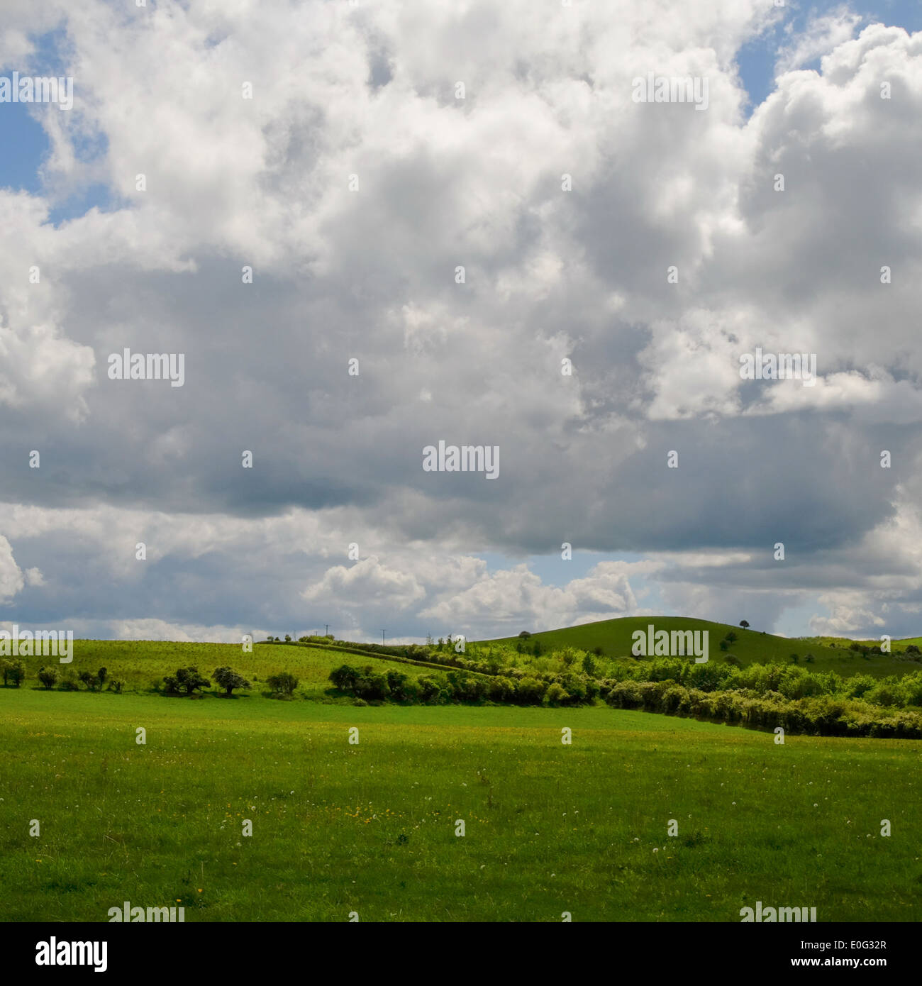 Ivinghoe Hills, Chilterns, England - Stock Image