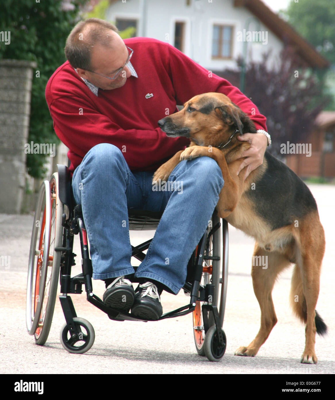 Man in the wheel chair with dog - one in a wheelchair with dog ...