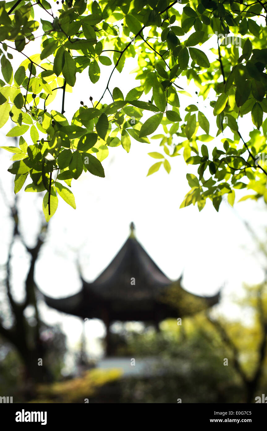 Pavilion in the Garden of the Humble Administrator, Suzhou, China - Stock Image