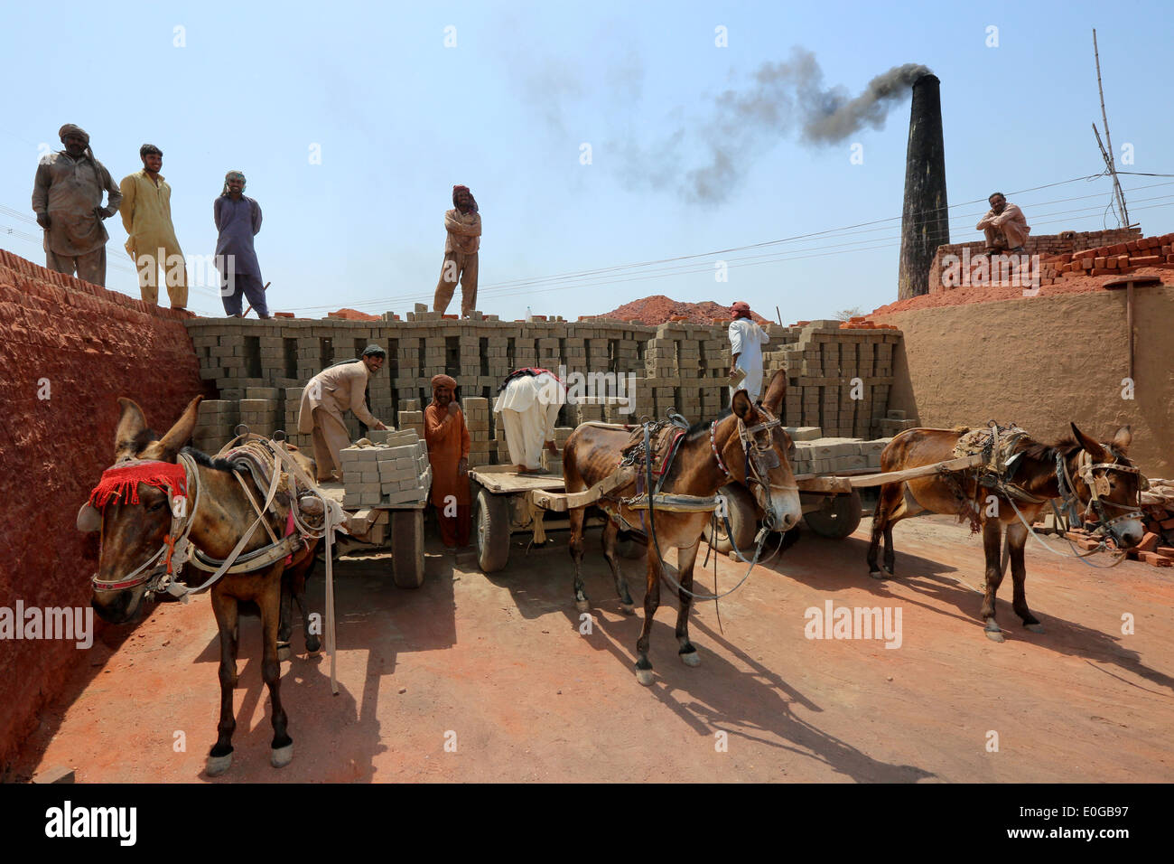 Donkey carts getting unloaded of bricks in a brick kiln of a brick factory, Lahore, Punjab, Pakistan, Asia - Stock Image