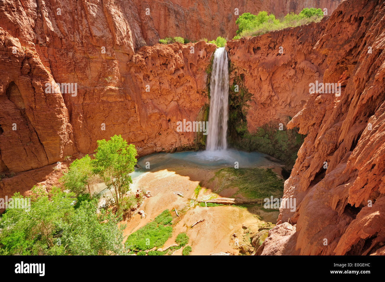 Chute Grand Canyon waterfall mooney fall, havasu, supai, grand canyon, grand canyon