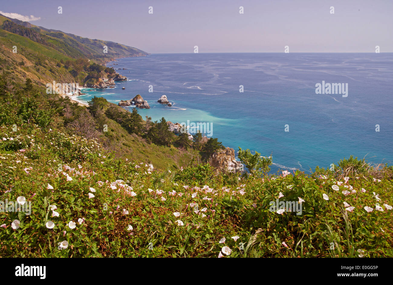 View of Pacific coast, Big Sur Coast bei Big Sur, All American Hwy, California, USA, America - Stock Image
