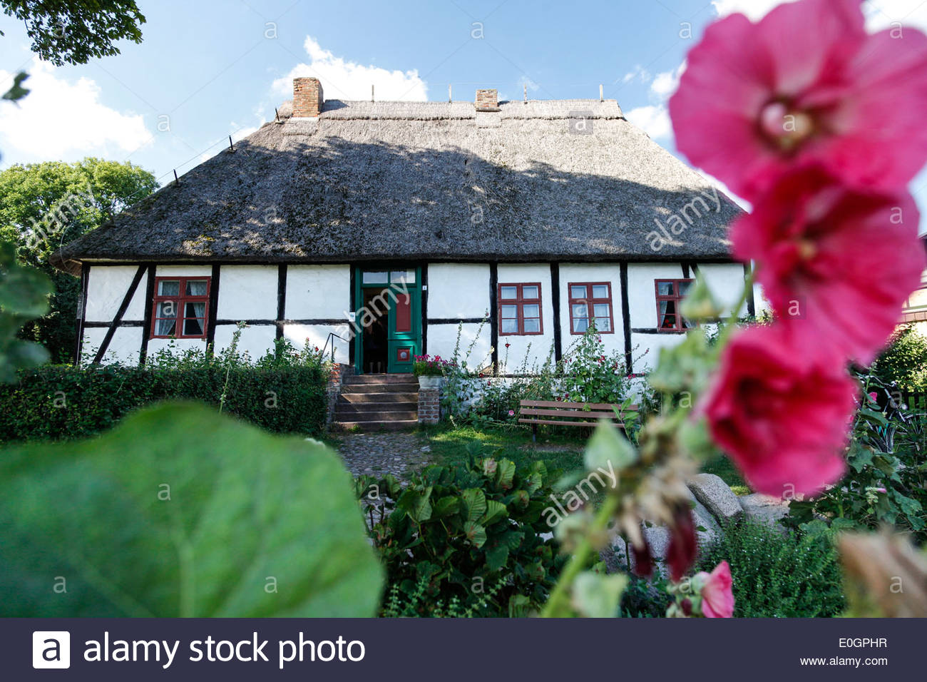Traditional house with thatched roof and with garden, Baltic Sea, Middelhagen, Moenchgut Peninsula, Island of Ruegen, Stock Photo