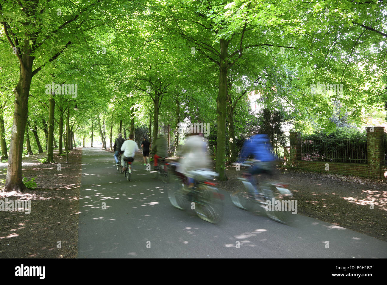 Bicycle riders in a city park - Stock Image