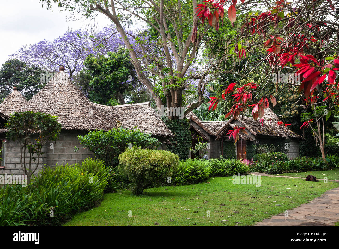 Mountain Village Hotel, Arusha, Tanzania, East Africa, Africa - Stock Image