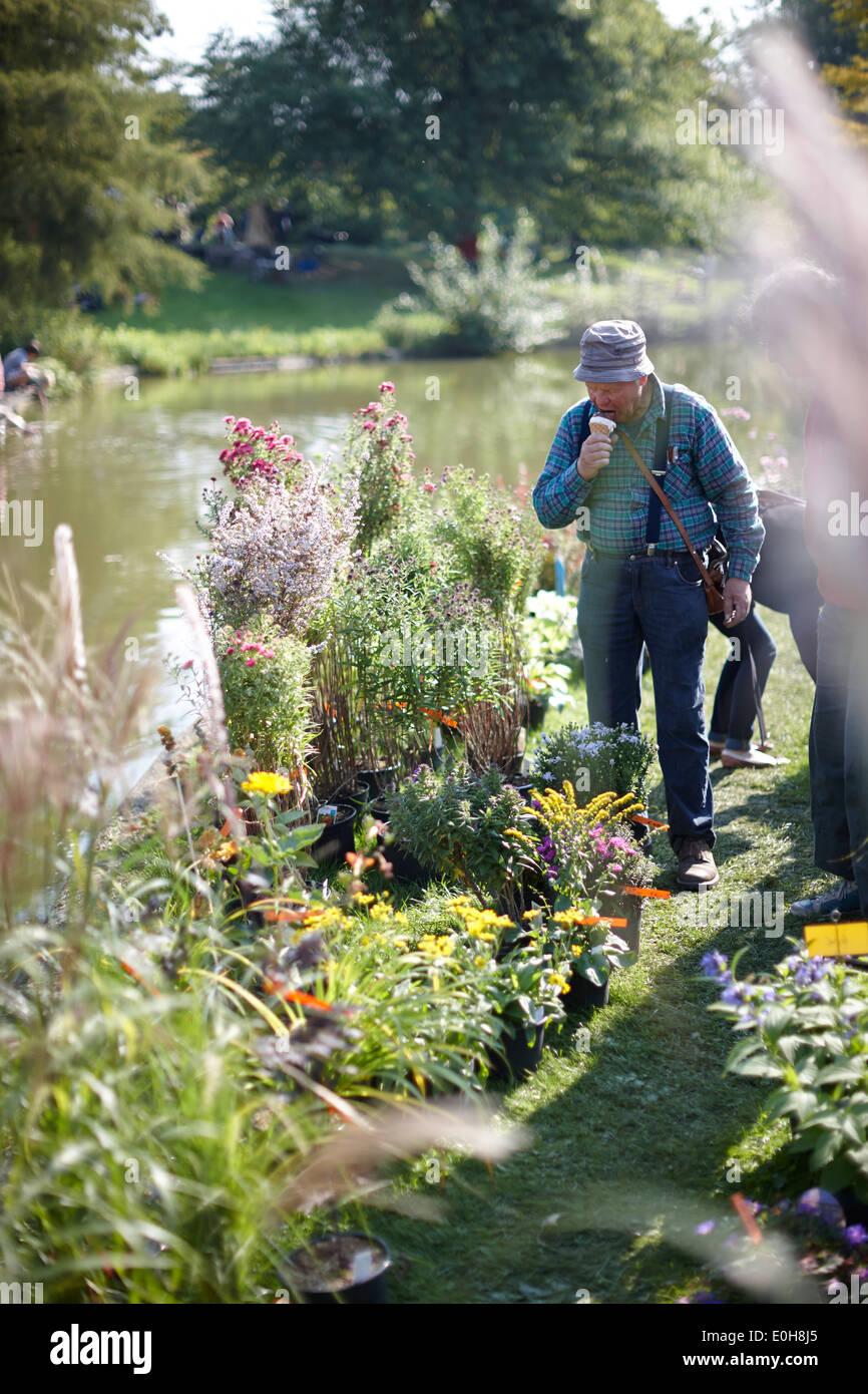Visitor of the Botanical market in the Botanical Gardens, Klein Flottbeck, Hamburg, Germany Stock Photo