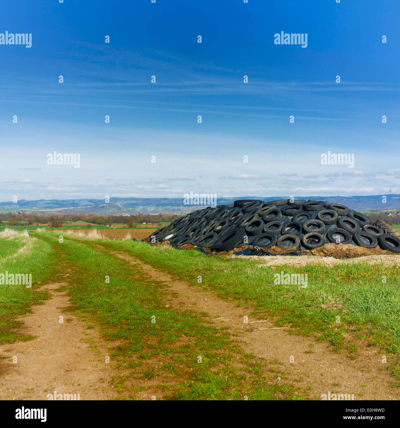 Old tires dumped in the midst of nature - Stock Image