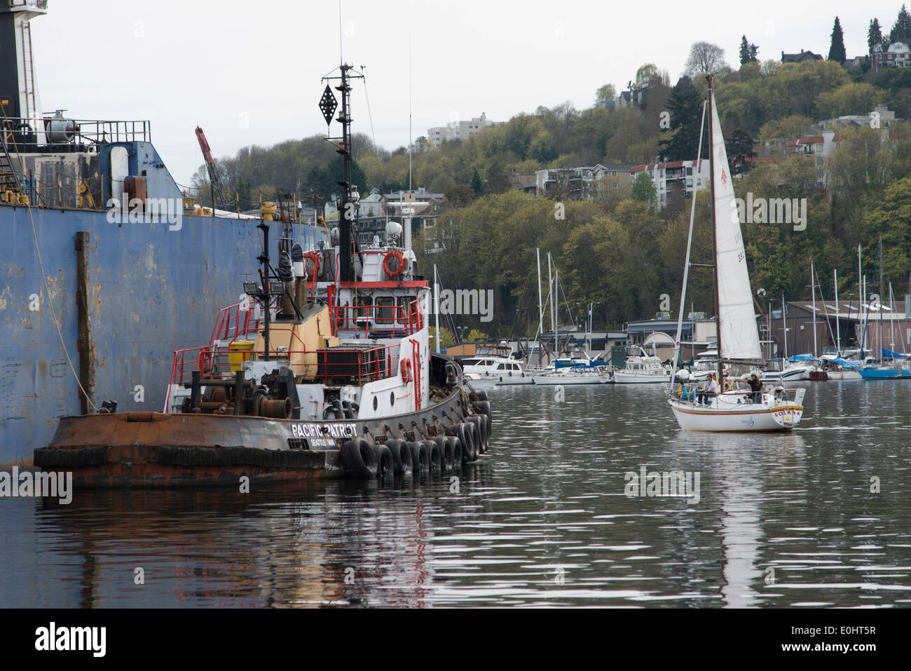 Tugboat moored at dock, Lake Union, Wallingford, Seattle, Washington State, USA - Stock Image