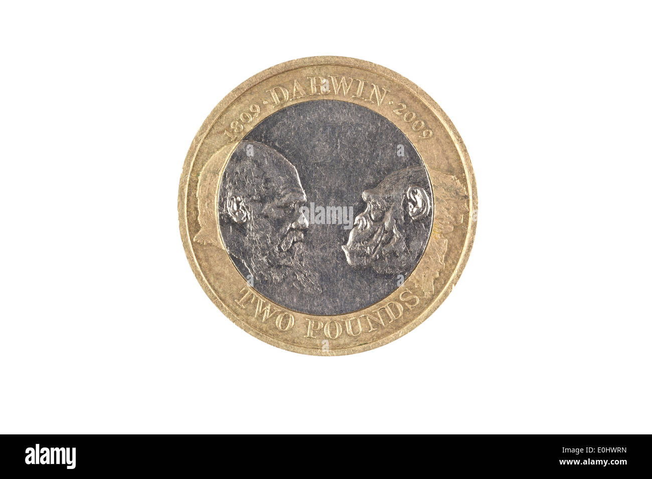 A special edition two pound coin marking the bicentenary of Charles Darwin's birth - Stock Image