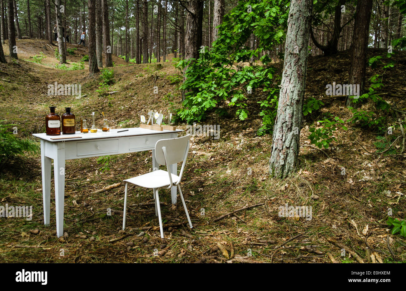 Natural Sciences experiment in a forest - Stock Image
