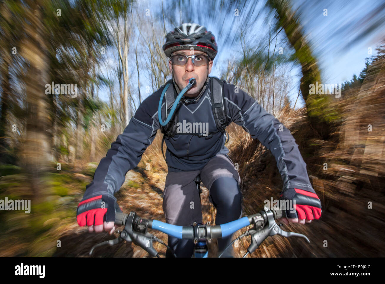 Male mountain biker drinking from a hydration pack. - Stock Image