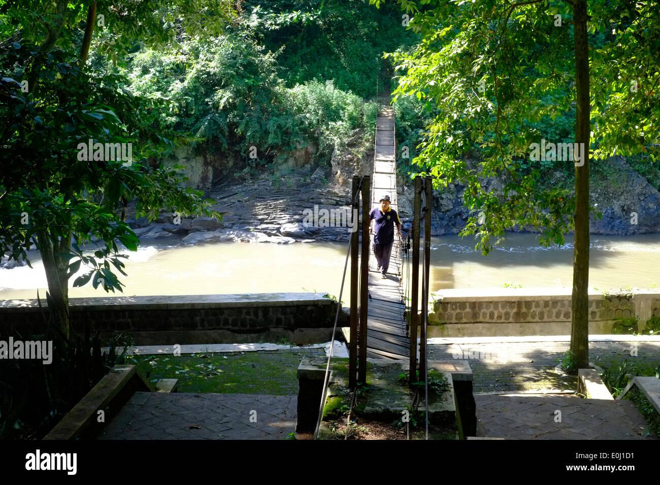 Local Man Walking Precariously Over A Rickety Bridge At The Purwodadi Botanical  Gardens Near Malang East Java Indonesia
