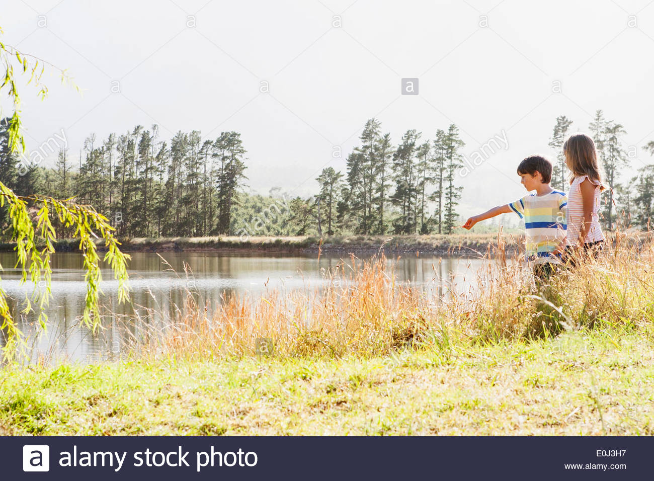 Children Exploring By Side Of Lake Stock Photo