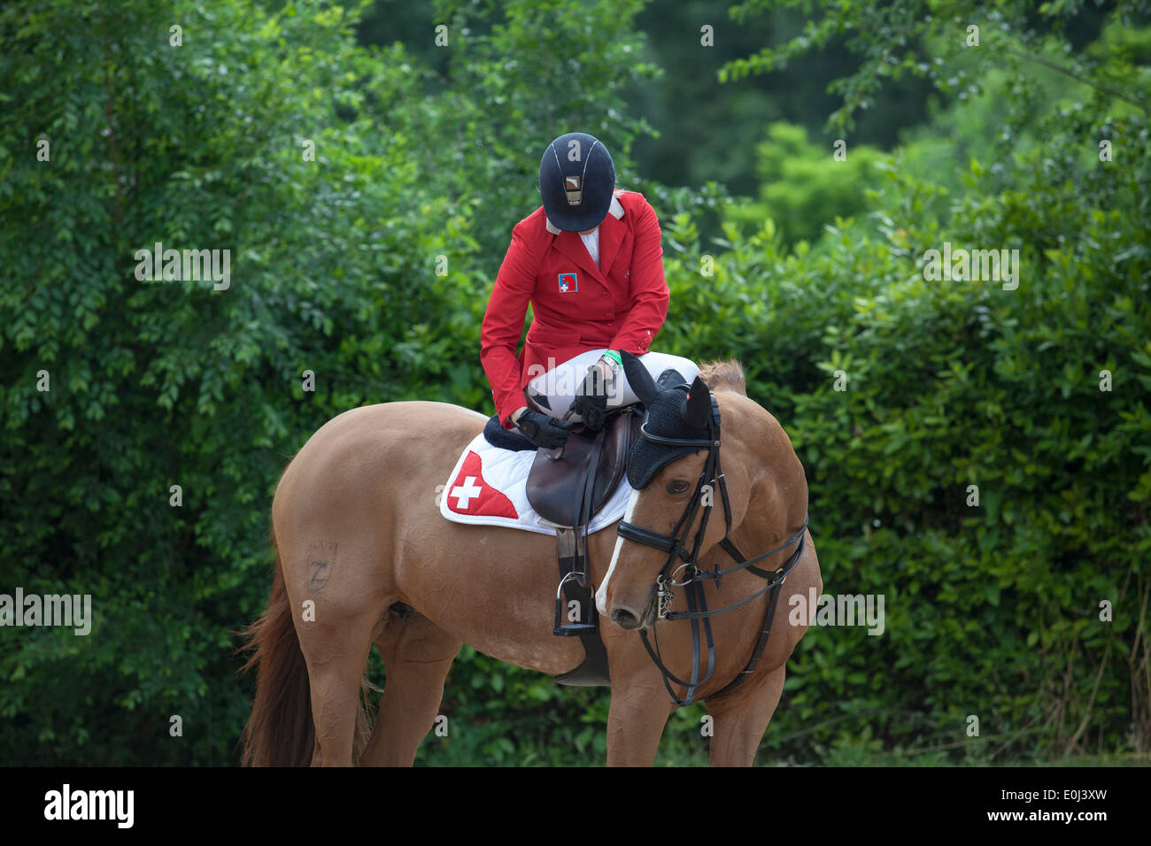 Christina Liebherr on LB Callas Sitte riding in paddock at the Piazza di Siena show jumping event in Villa Borghese in Rome 2013 - Stock Image