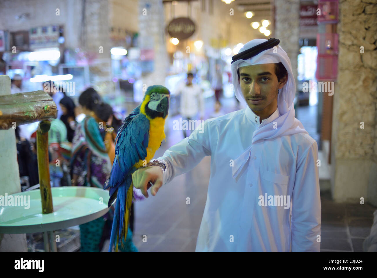 Doha. Qatar. Exotic birds for sale at Souq Waqif. Stock Photo