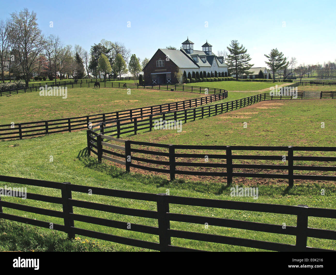 Black fences and a horse barn with cupolas on The Bluegrass Driving Tour,Lexington,Kentucky - Stock Image