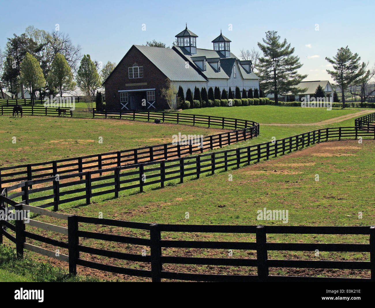 kentucky horse country images of the bluegrass