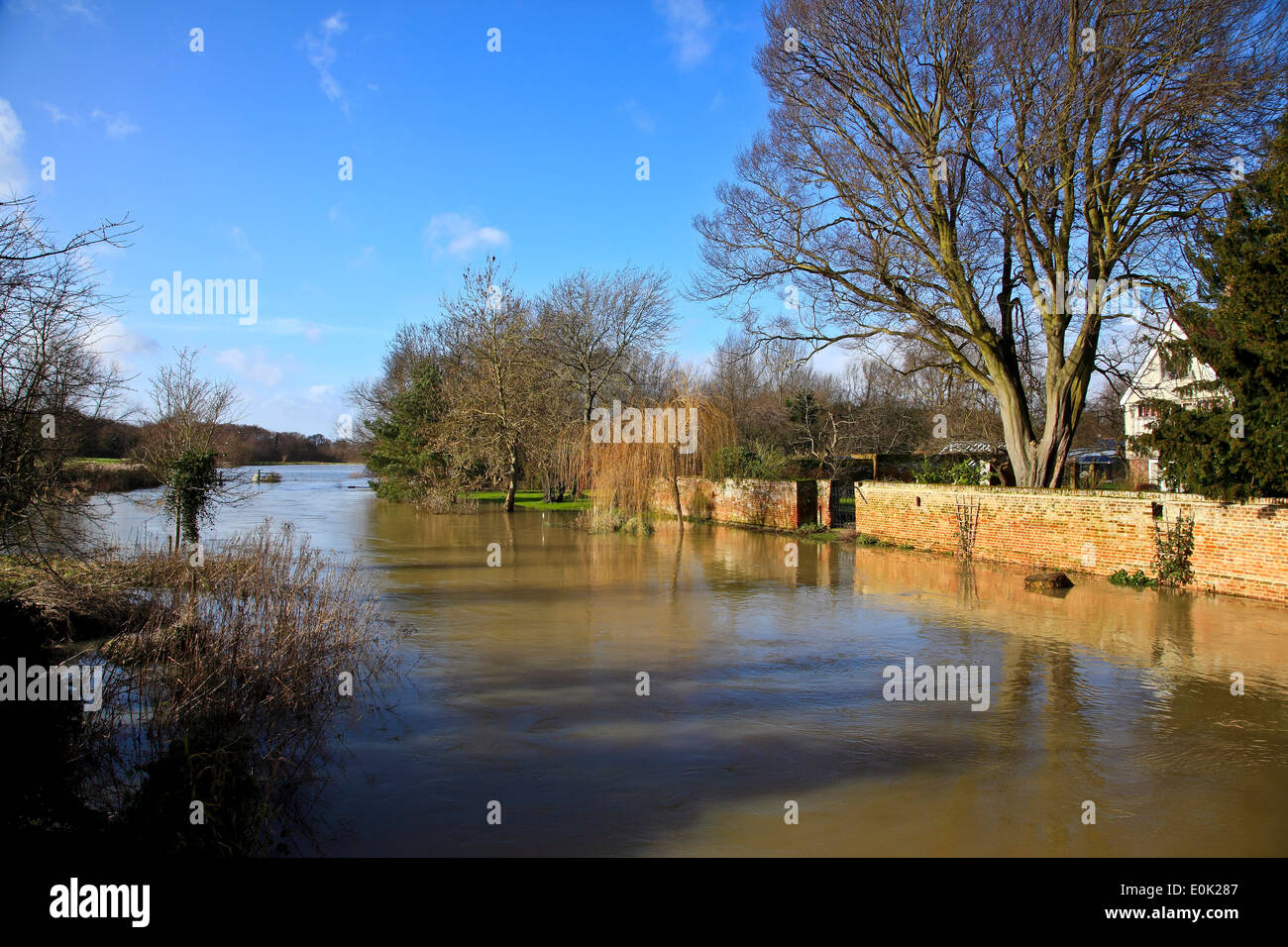 9479. River Stour flooding in Feb '14, Fordwich, Kent, England - Stock Image