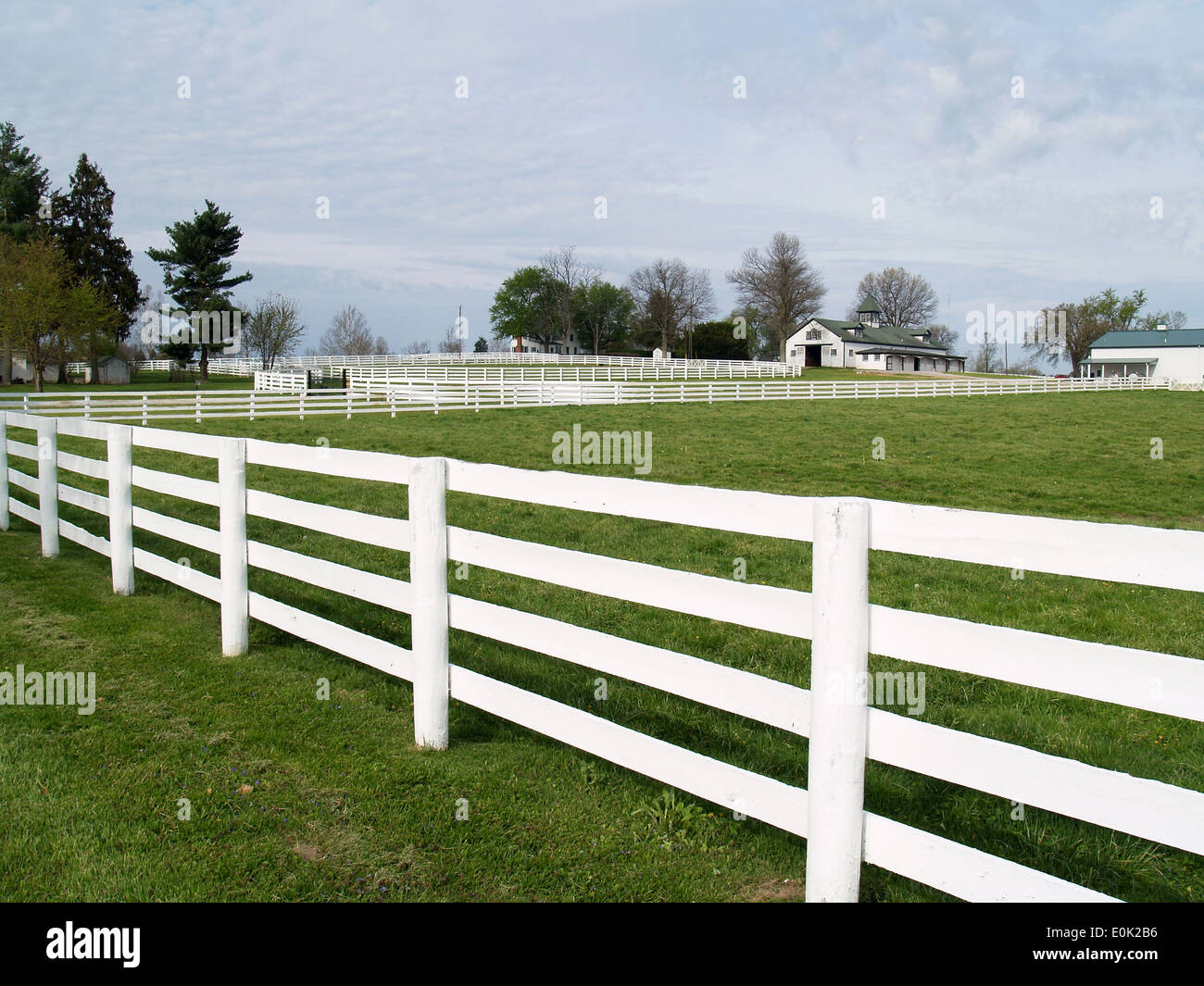 The white fences of a Thoroughbred farm near Lexington,Kentucky - Stock Image