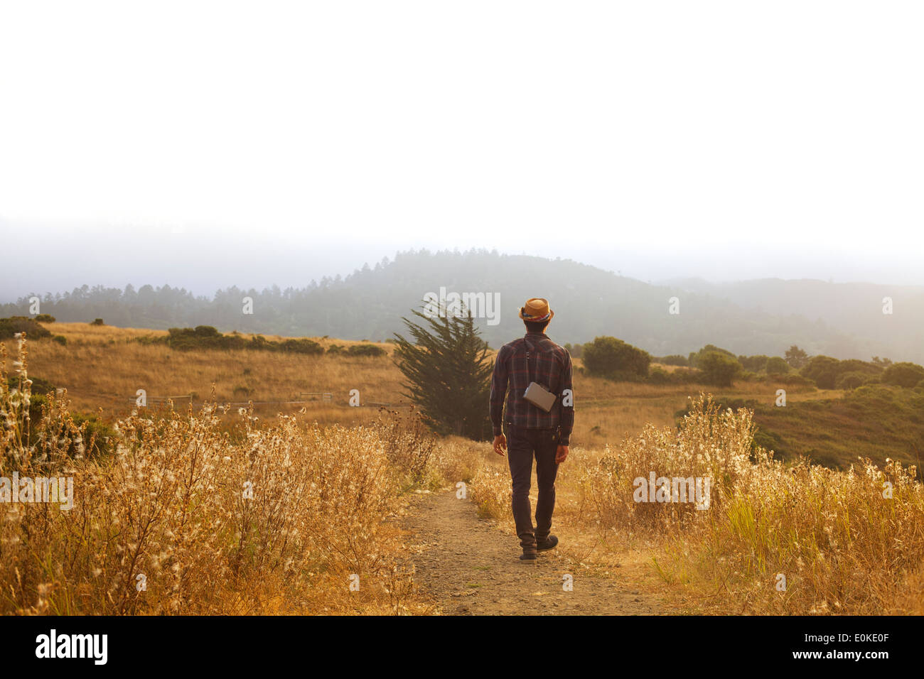A man with a straw hat and a land camera walks down a path in a field of dry golden grass. - Stock Image