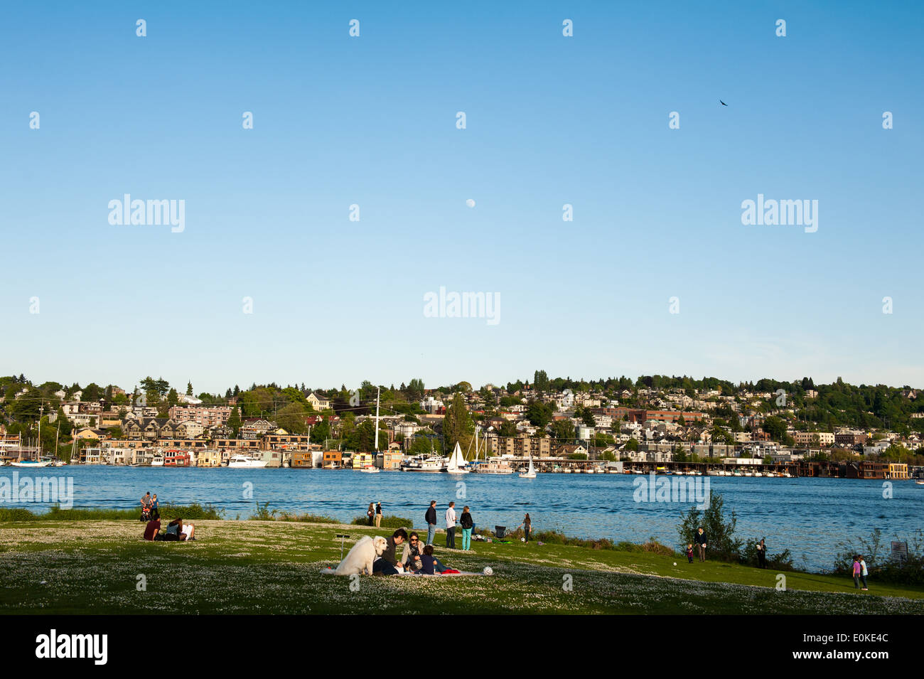 Gas Works Park overlooks Lake Union and a large portion of Seattle, including the Eastlake neighborhood. - Stock Image