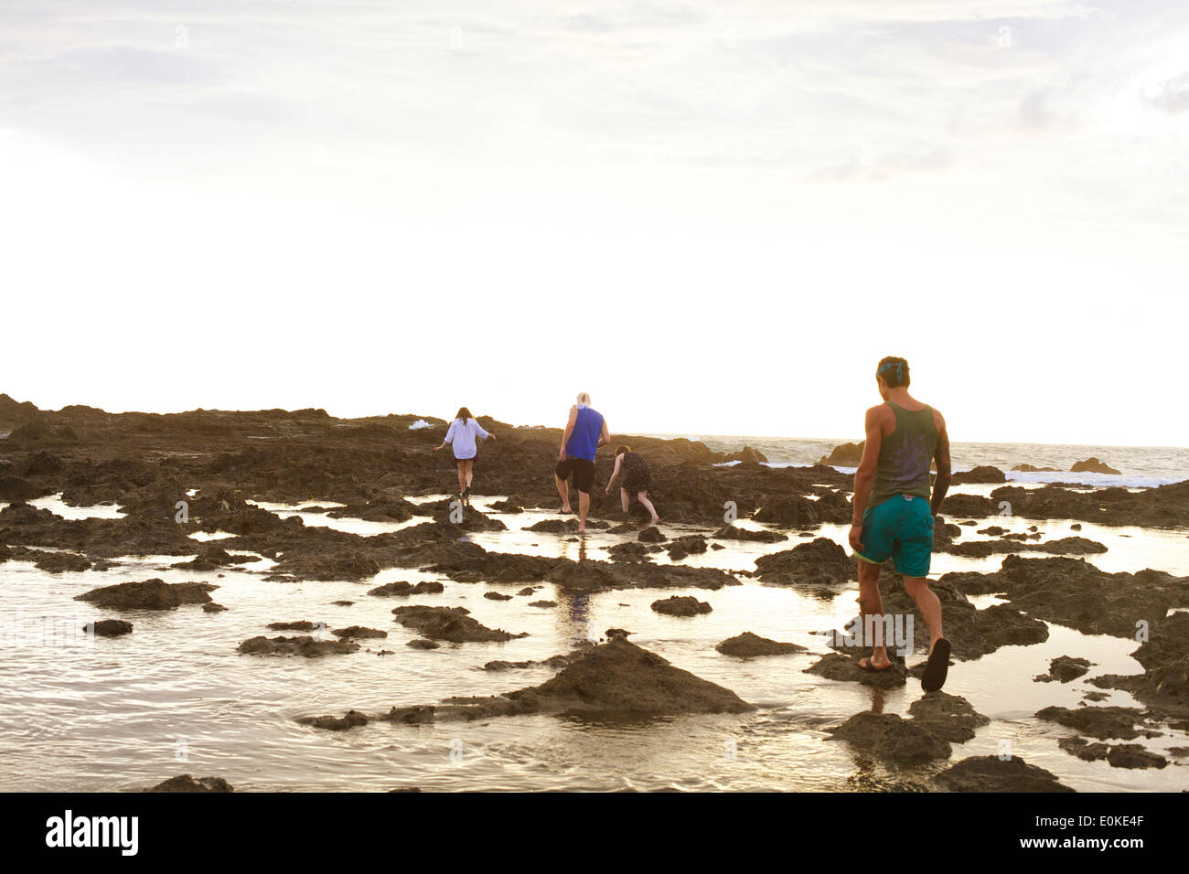 People explore Costa Rica's tropical tidal pools in the afternoon sunlight. Stock Photo