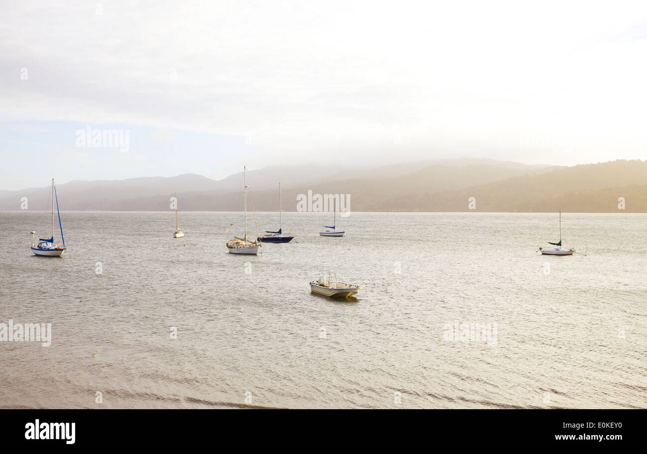 A group of sailboats anchored on the water in the afternoon light. - Stock Image