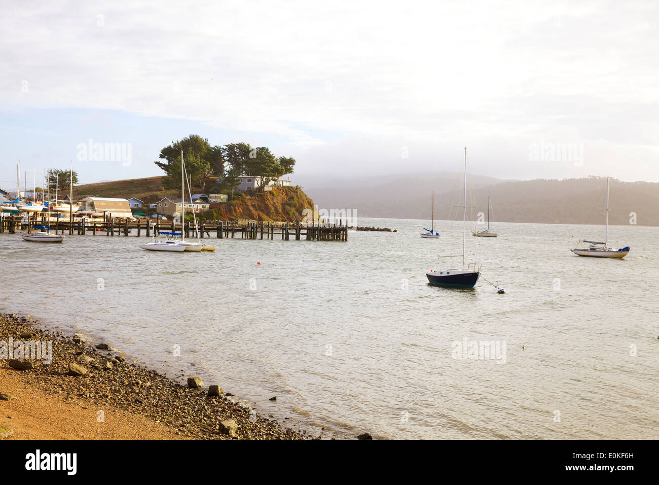 Sailboats anchored on Tomales Bay in Marshall, California. - Stock Image