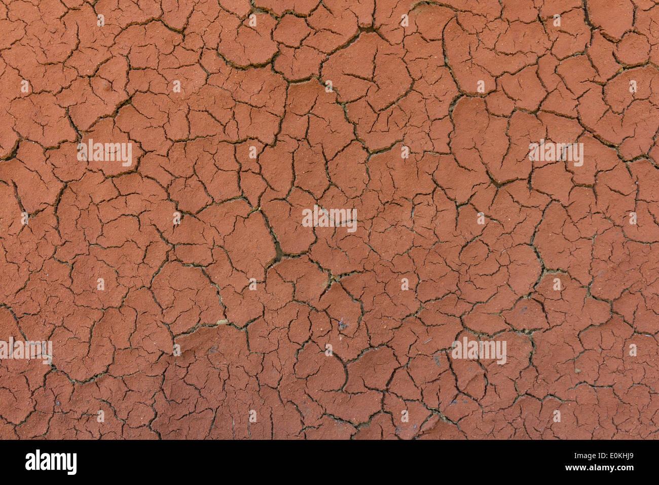 Cracked ground texture - Stock Image