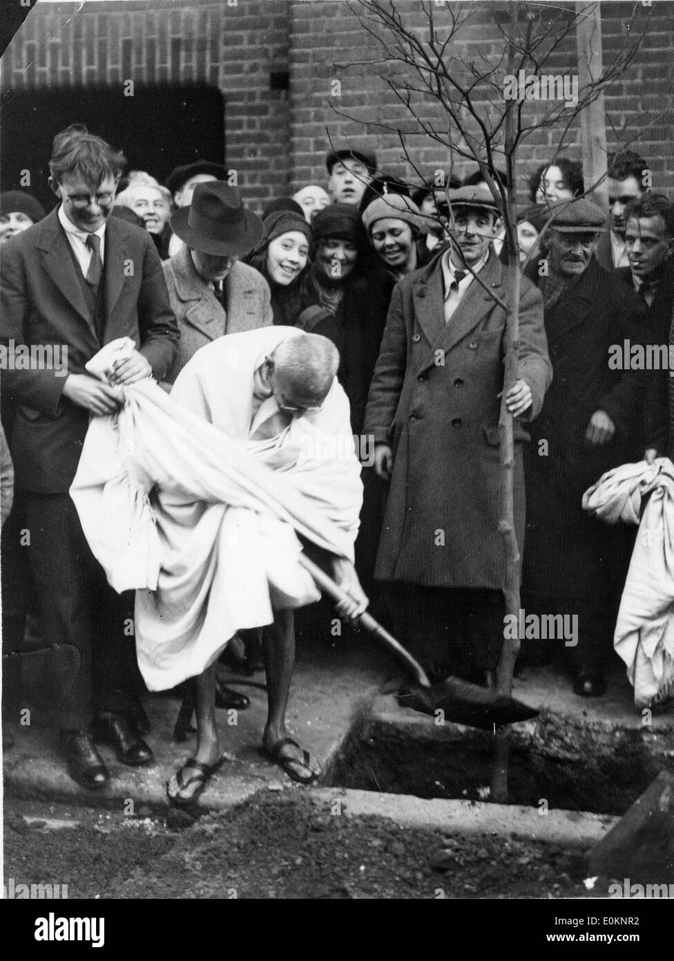 Mahatma Gandhi plants a tree outside Kingsley Hall - Stock Image