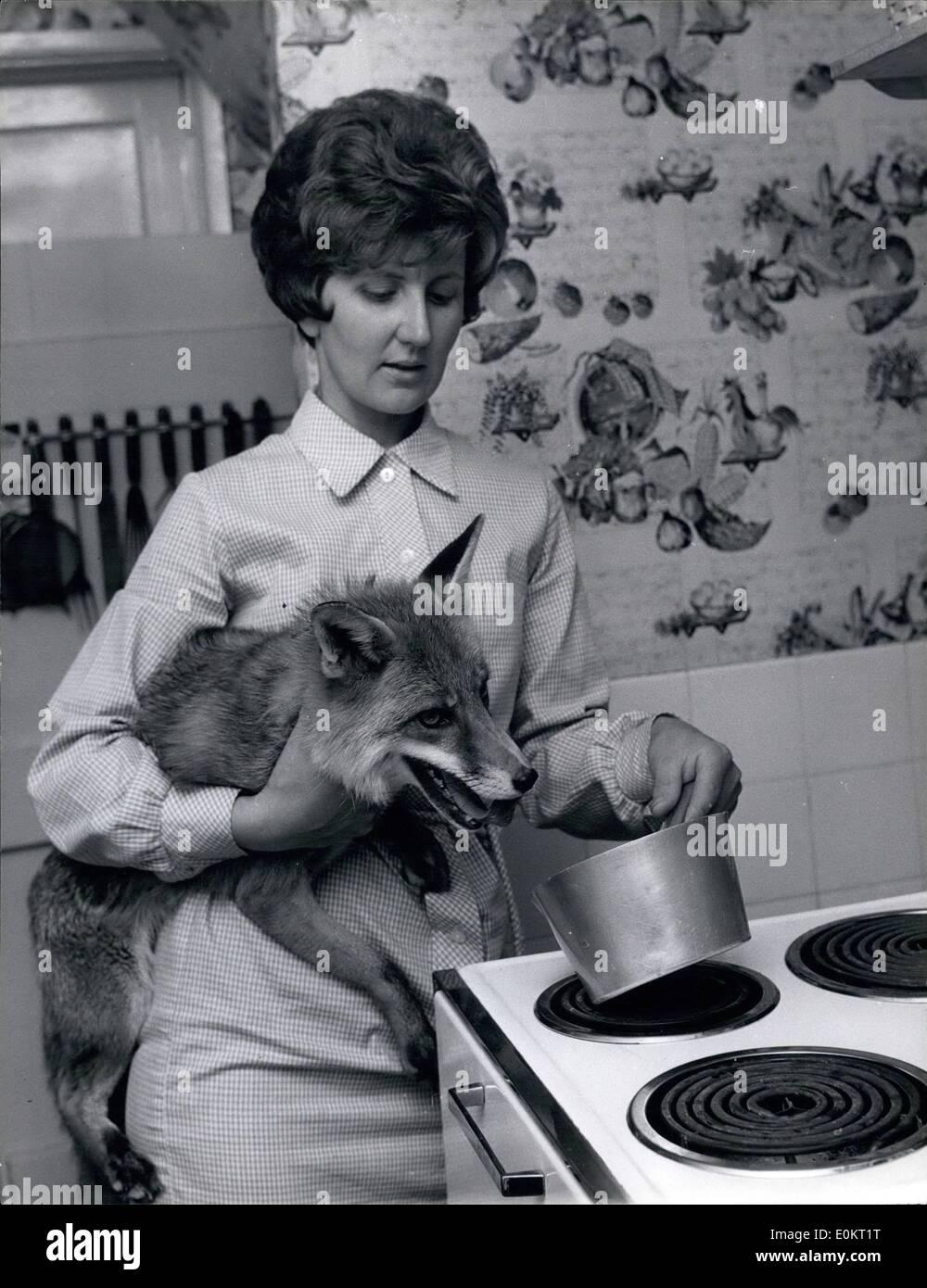 Jan. 01, 1950 - Fox - Stock Image