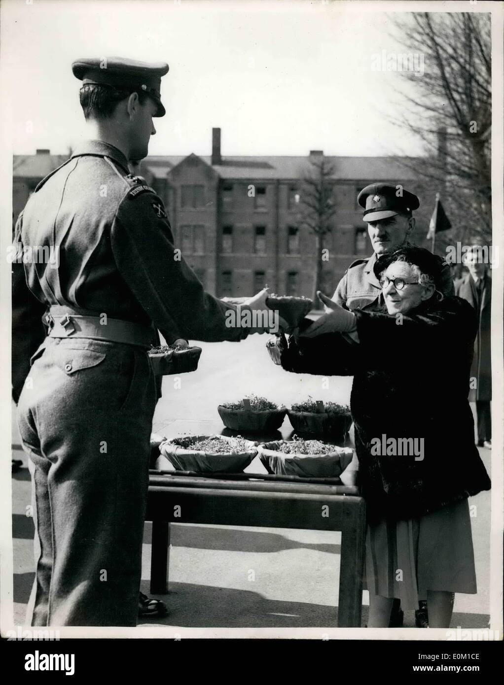 Mar. 03, 1953 - Daughter of Lord Roberts presents Shamrock to the Irish Guards. St. Patrick's day at Catherham barracks:Stock Photo