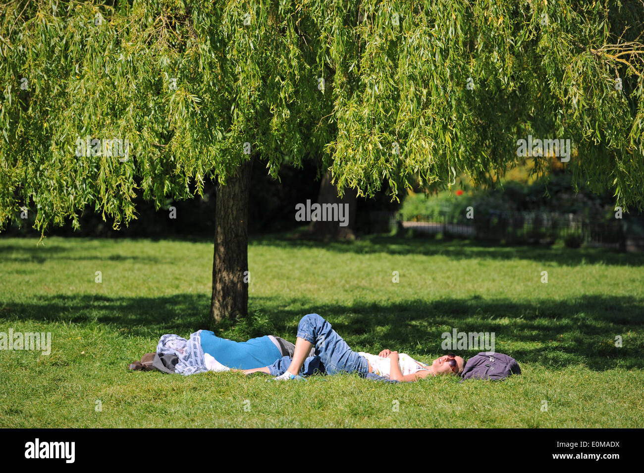 Brighton Sussex UK 16 May 2014 - Time for a sunbathe in Pavilion Gardens Brighton in the sunshine with temperatures expected to reach 23 degrees centigrade today The good weather is expected to last over the weekend  Photograph taken by Simon Dack/Alamy Live News - Stock Image