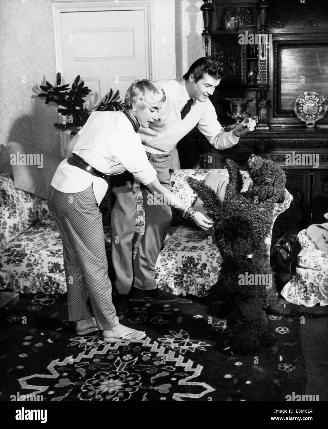 Actor Roger Moore and wife Dorothy Squires playing with their dogs - Stock Image