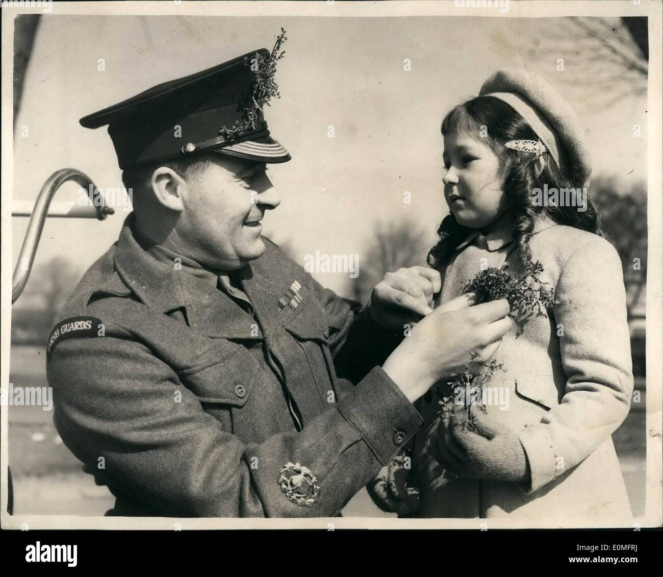 Mar. 03, 1955 - Daughter of Lord Roberts presents shamrock to the Irish Guards. St. Patrick's day at Catherham. Coutess Roberts - Stock Image