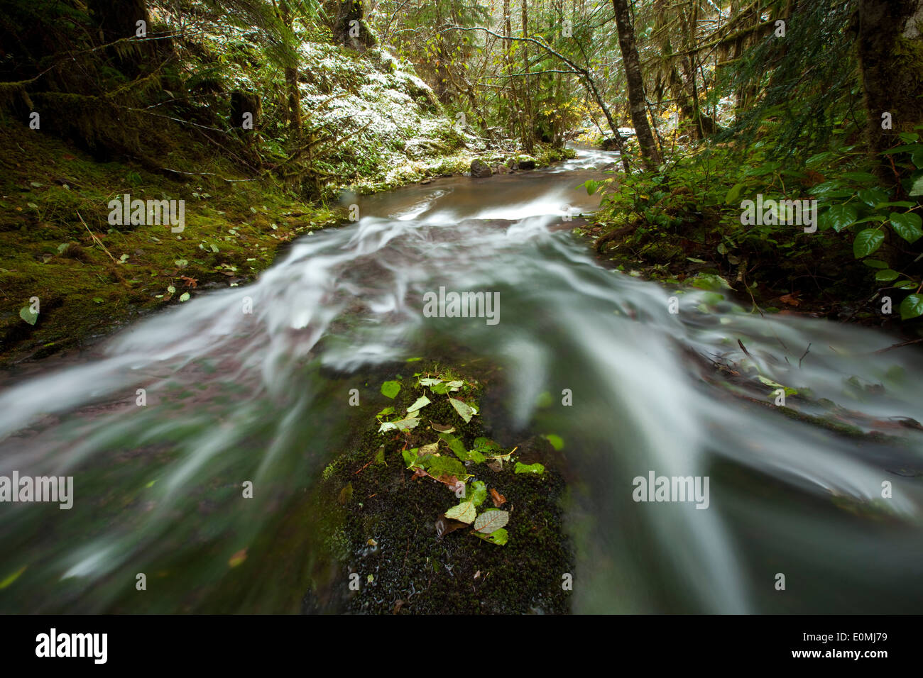 Water rushes over a gradual waterfall after the first snow of the year, Oregon, USA - Stock Image