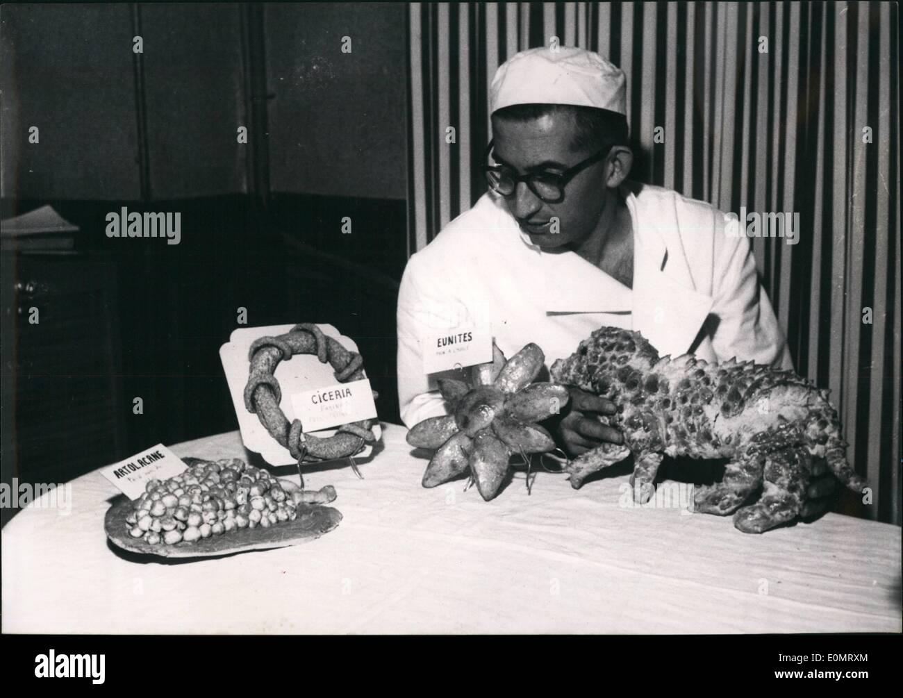 Jun. 06, 1956 - Paris Baker Exhibits Ancient Greek and Egyptian Bread: M. Sarrau, a Pris Baker, is a reat scholat at the same Time. after much research work and stuies he has succeeded in fingding the recipe for producing Acien Greek and Egyptain Bread which he is now showing in his bakery. ''None of my customers, said the Erudite Baker,'' would ever like to have this Bread for his meals. but it is quite intersting.'' Picture Shows;' M. Sarrau with some of his 'Historical' Loaves. - Stock Image
