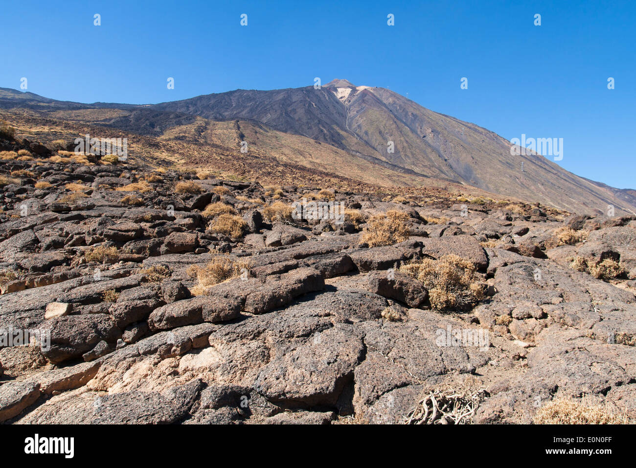 Pahoehoe lava with the Teide volcano in the background in Tenerife, Canary Islands. - Stock Image